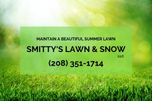 Summer Lawn Maintenance in Rigby ID