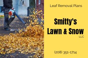 Rigby Idaho Leaf Removal