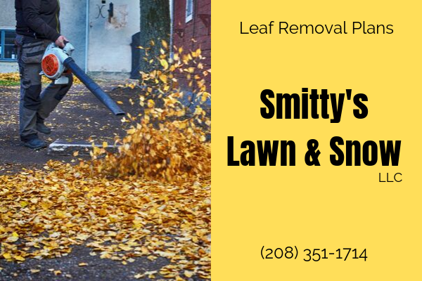 Rigby Idaho Leaf Removal