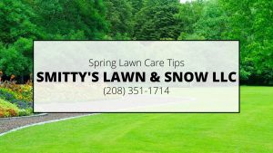 Rigby Spring Lawn Maintenance