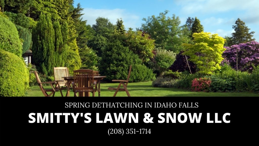 Idaho Falls Spring Dethatch